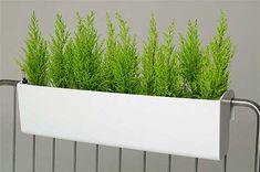 BALKONA Balkonkasten mit Bewässerungsset, weiß