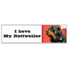 Rottweiler Love Bumper Stickers #zazzle #rottweiler #stickers #dogs