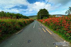 15IRL0126-irland-slea-head-drive