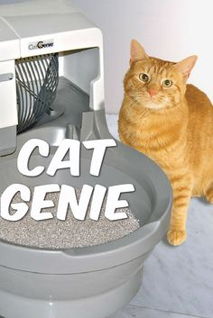 Home robotics help our furry friends as well. The Cat Genie is a relatively new self cleaning litter box aimed at automating the kitty litter cleaning process. If the measure of a good home robot is how well it automates househould drudgery, then the Cat Genie is an especially effective robotic device. While the floor cleaning industry is now well stocked with robotic vacuums like the Roomba, kitty litter cleaning is still a relatively untested domain.