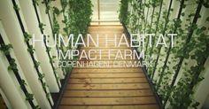 impact-farm-video-image