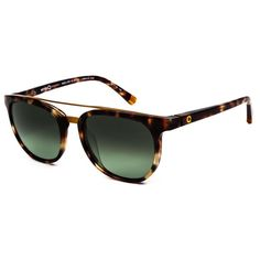 7cccce149f Etnia Barcelona Wla Africa 04 S LEGD Sunglasses (179 AUD) ❤ liked on  Polyvore featuring accessories