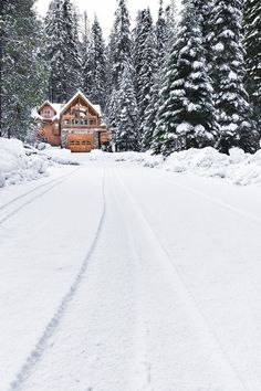 Tidings of Comfort and Joy Christmas Lodge, Comfort And Joy, Tumblr, Cozy Cottage, Cabin Homes, Snow, Outdoor, Log Cabins, Swords