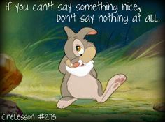 """""""If you can't say something nice, Don't say nothing at all,"""" And I learned that from Thumper."""