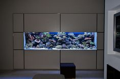 in wall aquarium to be put into existing shelving