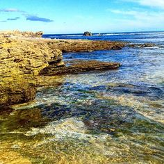 Shelly beach Warrnambool... #warrnambool #seascape #shellybeach #victoria #beach #ocean #rockpools #wintercolours #landscape_lovers #coastline #instagram #instalike #instacool #instadaily #instapic #photo #picture #sarproductions75@gmail.com #scottyreeves #scottreeves #arty #art #australianartist #australian #australianartists by sarproductions75