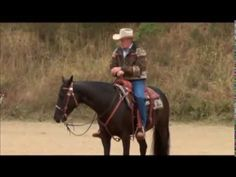 How to Prepare your Horse for a Flying Lead Change