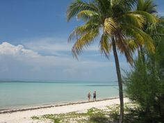 My holiday to the Grand Bahama Island - travelpassionate.com