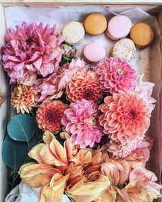 Do you love beautiful blooms? Then you'll love these five floral instagram feeds to follow! Instagram Feed, Instagram Posts, Floral Crown, Flower Wall, Wedding Bouquets, Wild Flowers, Floral Wreath, Bloom, Wreaths