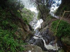 Tsitsikamma National Park in Zuid-Afrika.