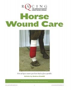 Cuts and wounds are inevitably going to happen to your horse. Are you prepared? Download AQHA's FREE Horse Wound Care report so you will be able to properly treat your horse in the event of an injury.