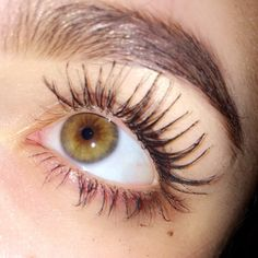 Goodbye harmful and expensive extensions 👋Hello Natural Lashes! Long, full, thick and overall beautiful lashes! Thanks to Stronglash! Use our code SUMMER for off our lash serum! Eyelashes Drawing, How To Draw Eyelashes, Longer Eyelashes, Grow Eyelashes, Natural Eyelashes, Mink Eyelashes, Hazel Green Eyes, Hazel Eyes, Aesthetic Eyes