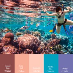 'Scuba Diver in Om' Color Scheme from 11 Color Schemes: Seascape Edition Color Schemes Colour Palettes, Best Color Schemes, Paint Color Schemes, Fall Color Palette, House Color Schemes, Color Palate, House Colors, Color Combinations, Coastal Paint Colors