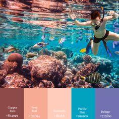 'Scuba Diver in Om' Color Scheme from 11 Color Schemes: Seascape Edition