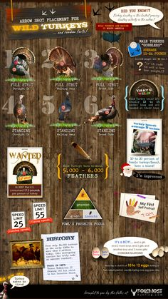 How To Turkey Hunting Tips, Are you still struggling when you go turkey hunting ? Get More Turkey Hunting Tips and Secrets To Bag More Turkeys Hunting Tips, Elk Hunting, Turkey Hunting, Hunting Stuff, Hunting Humor, Pheasant Hunting, Archery Hunting, Best Turkey, Wild Turkey