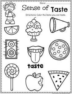 Preschool 5 Senses Worksheet - Sense of Taste Five Senses Kindergarten, Five Senses Preschool, 5 Senses Activities, My Five Senses, Kindergarten Science, Preschool Lessons, Preschool Learning Activities, Kindergarten Worksheets, Preschool Body Theme