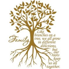 """Family: Like branches of a tree, we all grow in different directions, but our roots keep us all together.""  Vinyl grafic, $5.99"