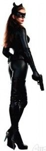 Batman the Dark Knight Rises Catwoman Cardboard Standup. Real nice Anne Hathaway product.