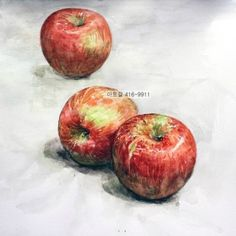 아트앤몰 A rainbow in a red apple Watercolor Fruit, Watercolor Flowers, Watercolor Paintings, Watercolour, Watermelon Art, Watermelon Carving, Apple Plant, Still Life Fruit, Cup Art