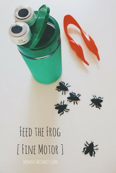 Jul 26 Frog Activities for Toddlers The inspiration for all these frog-themed activities originally Rainforest Activities, Frog Activities, Infant Activities, Learning Activities, Toddler Teacher, Toddler Fun, Toddler Preschool, Frogs Preschool, Preschool Centers