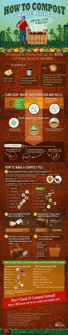 How to compost like a boss! :) --> If you are a NEWBIE to composting, here's a helpful graphic of How To Compost The Farm, Farm Gardens, Outdoor Gardens, Veggie Gardens, Organic Gardening, Gardening Tips, Organic Compost, Vegetable Gardening, Composting 101