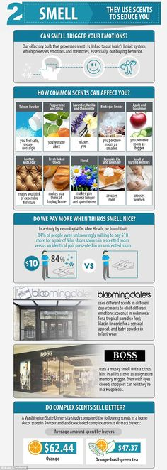 Aroma Essencial: Como os sentidos influenciam consumidores?