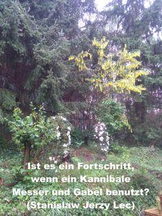 Ist es ein Fortschritt, wenn ein Kannibale Messer und Gabel benutzt? (Stanislaw Jerzy Lec) Gabel, Plants, Mathematical Analysis, Happy Life, Knives, World, Quotes, Plant, Planets