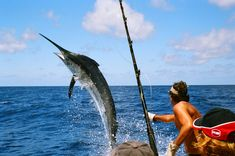 Go deep sea fishing and learn to prepare and cook your catch - 10 Unusual Ideas to Add to your Bucket List
