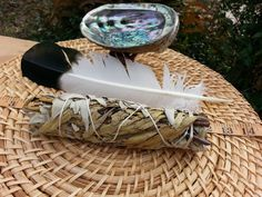 Large White Sage and Yerba Santa Smudging Kit ~ White Sage and Yerba Santa Bundle 7~9 inches, 5~6 inches abalone shell and stand, feather