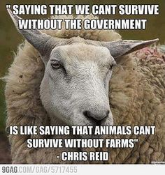 survive without the government