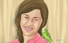 """How to Gain Your Parakeet's Trust. Parakeets, also known as budgerigars or simply """"budgies,"""" are a type of parrot native to Australia. Budgies are common pets around the world, and can be taught to do things like play with toys, sit on. Parakeet Care, Pet Bird Cage, Budgies, Gain, Trust, Animal, Pets, Pictures, Photos"""