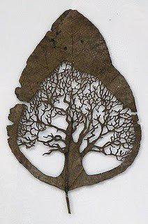 Leaf cut by artist Lorenzo Duran