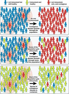 herd immunity (an excellent way to make the point)