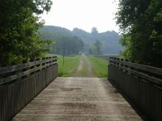 biking the Katy Trail - near Augusta, MO ummm the bike winery trail!  So, doing this!
