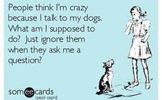 Haha, I do talk to my dogs! Call me crazy but they do understand and I seem to know what they are saying back to me!