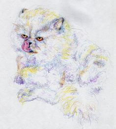 Grouchy Fluffy Cat Just Takin' a Bath Art Print by Anna Dunlap Hartshorn
