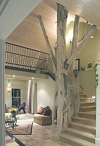 Giant tree that houses a fireplace in the livingroom.