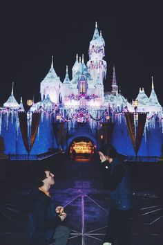 // Disneyland proposal