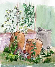 Behind the Greenhouse: Pen and Watercolour