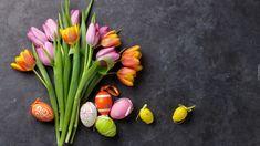Wielkanoc, Kolorowe, Tulipany, Pisanki, Szare Tło