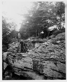 """""""John Burroughs (April 3, 1837 – March 29, 1921) was an American naturalist and essayist important in the evolution of the U.S. conservation movement.""""  John Burroughs looks over Grand Gorge © AMNH Library/Image #229759"""