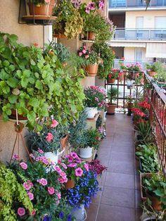 30 Comfy and Cozy Outdoor Balcony Decorating Ideas - garden landscaping Small Balcony Design, Small Balcony Garden, Small Balcony Decor, Balcony Flowers, Balcony Plants, Outdoor Balcony, Terrace Garden, Balcony Gardening, Balcony Railing