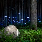 Artist Barry Underwood photographs wonderfully mysterious light installations that he installs on-site in forests, mountainsides, or near lakes and rivers.