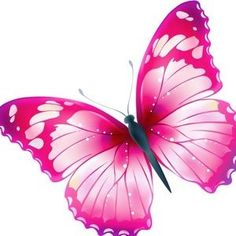 The Most Beautiful Butterfly Pictures - Wish Letter - The Most Beautiful Butterfly Pictures – Wish Letter The Effective Pictures We Offer You About mot - Butterfly Clip Art, Butterfly Images, Butterfly Painting, Butterfly Wallpaper, Butterfly Kisses, Pink Butterfly, Beautiful Butterfly Pictures, Beautiful Butterflies, Art Papillon