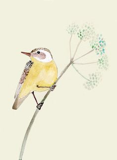 Yellow bird on Flower SMALL print of original illustration. $12.00, via Etsy.