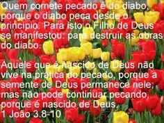 Imagem para Facebook com mensagem bíblica
