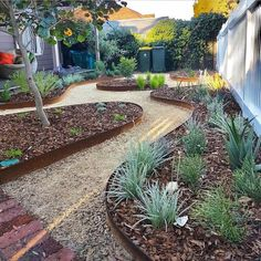 Garden Edging Ideas to Make Your Home Eye Catching - SnapShot Magazine Front Yard Garden Design, Front Garden Landscape, House Landscape, Garden Design Plans, Porch Garden, Fence Design, Garden Beds, Australian Garden Design, Australian Native Garden