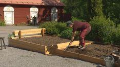 Gör trädgårdsarbetet lätt – bygg lådor att odla i   Hobby och hantverk   svenska.yle.fi Weed, Outdoor Power Equipment, Garden, Garten, Lawn And Garden, Marijuana Plants, Gardens, Garden Tools, Gardening