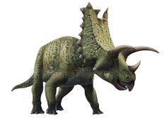 Pentaceratops by ~atrox1 on deviantART