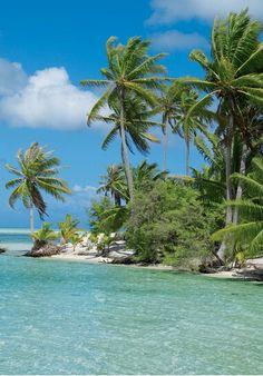 Island Life.  Tropical Paradise